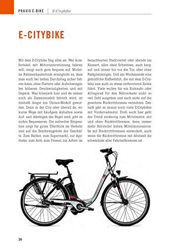 Das E-Bike: Technik, Modelle, Praxis - 10