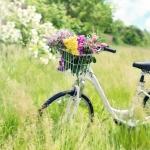 Fahhrradfahren